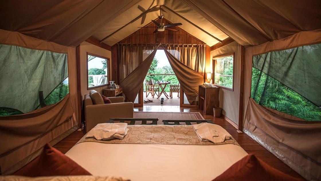 Room View At The Galapagos Safari Camp