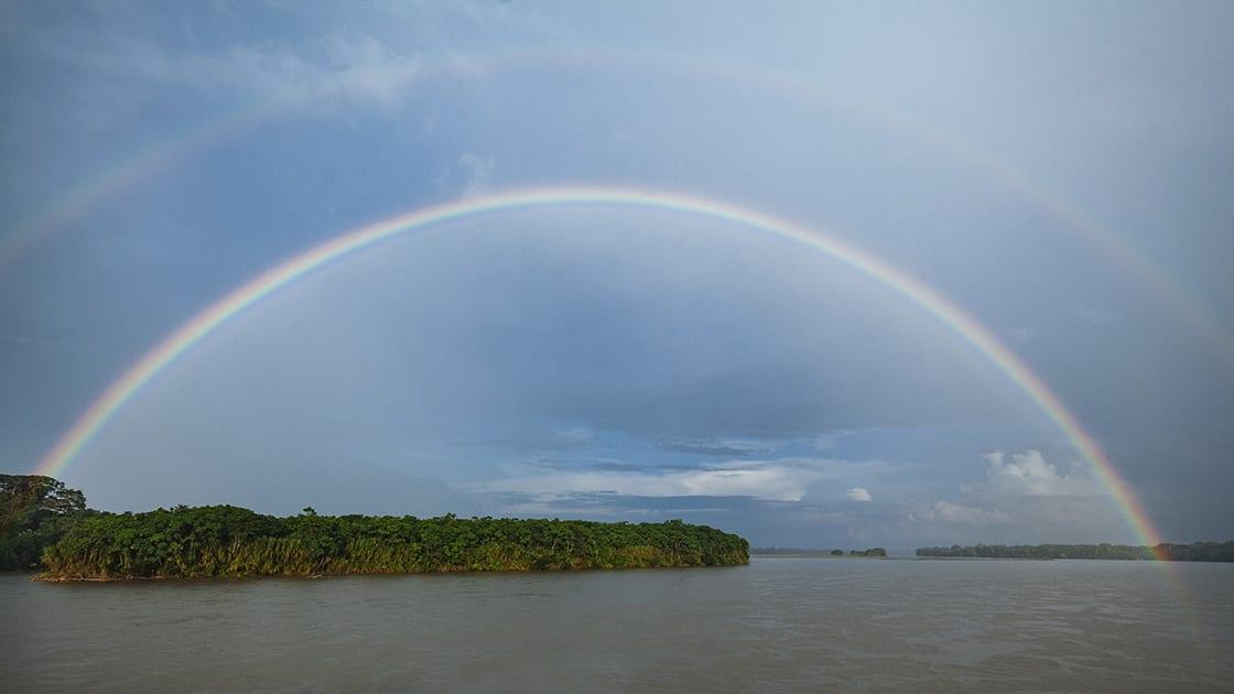 Rainbow At Yasuni Natural Reserve