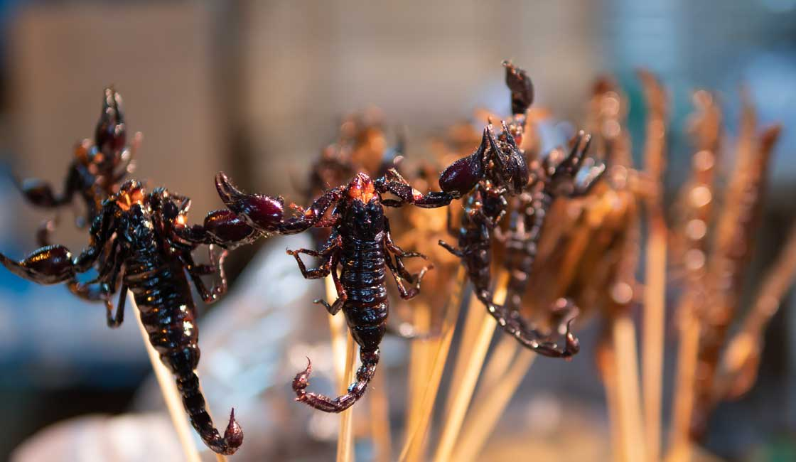 Scorpio skewers