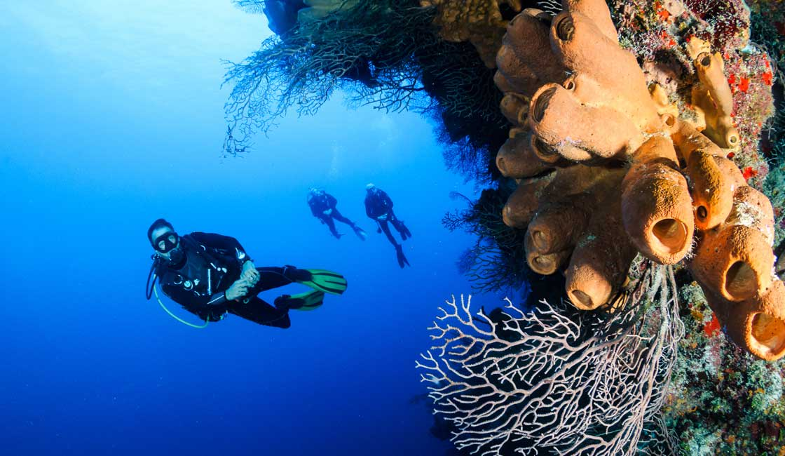 Divers in Indonesia