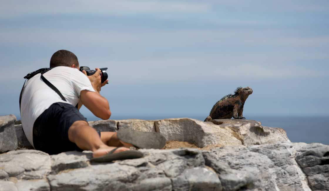 A man taking picture of Marine Iguana