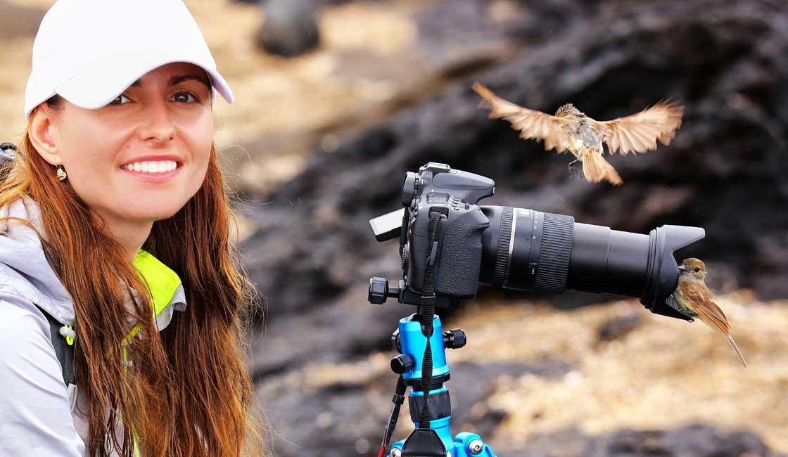 Birds sitting on a photographer's camera