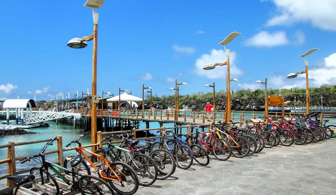 Bicycles at port