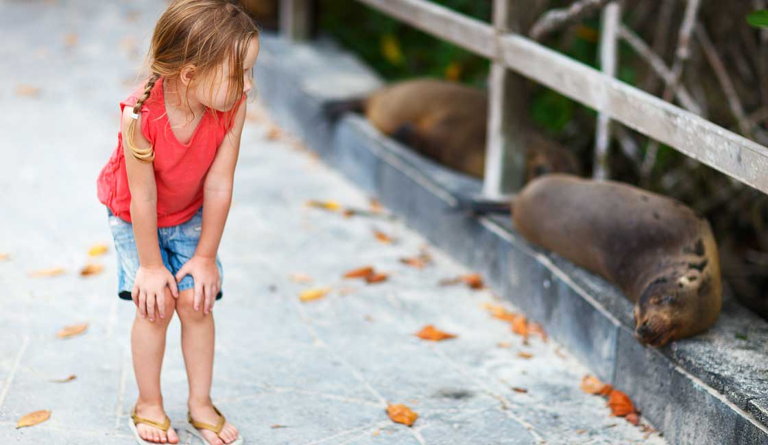 A girl observing a sea lion