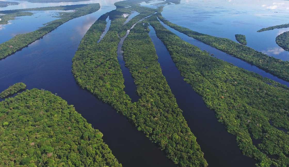 Aerial view of vast wetlands