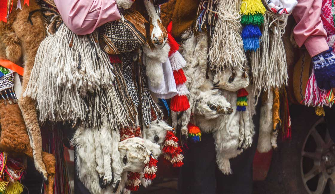 Woollen sheep attached to the costumes