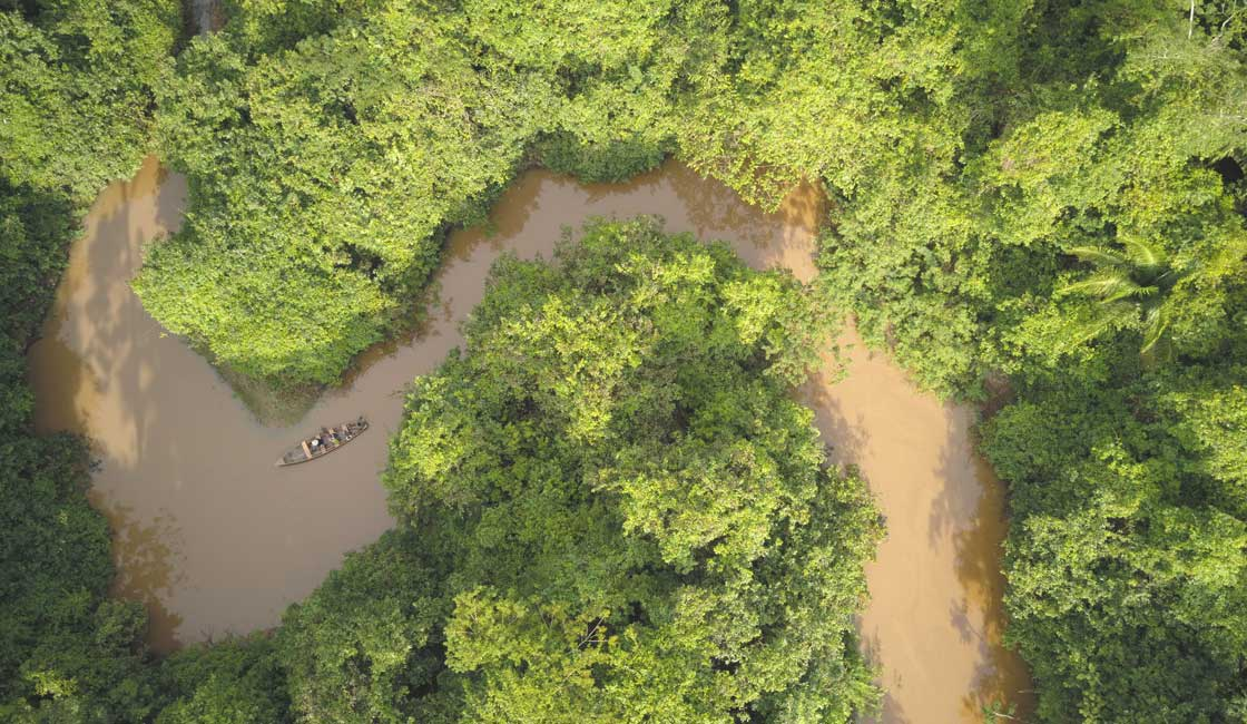 Narrow river in the jungle from above