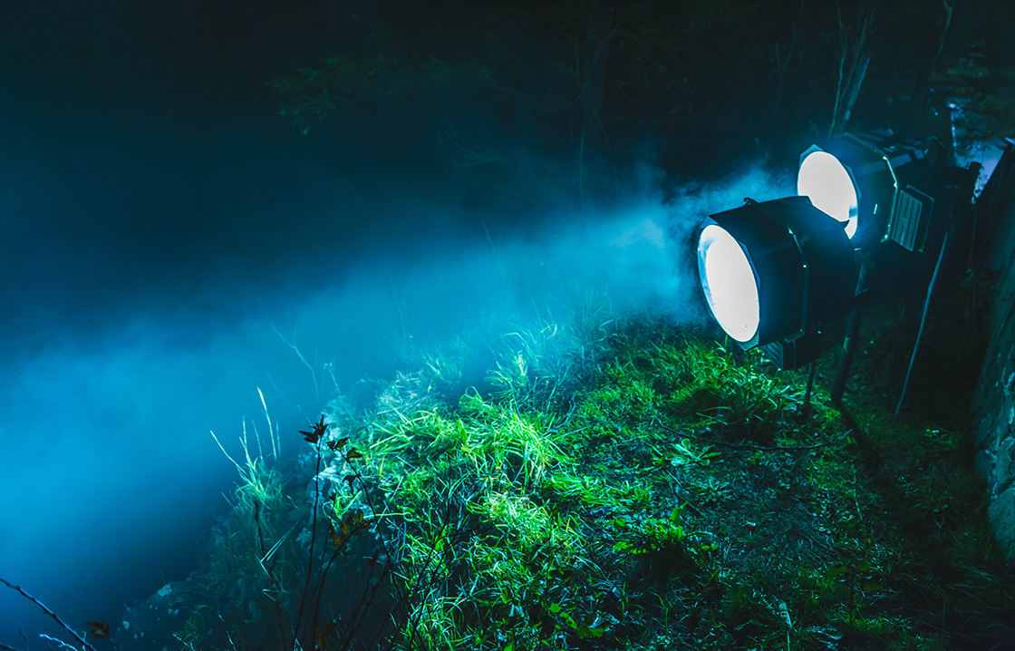 Spotlights Illuminate In The Forest At Night