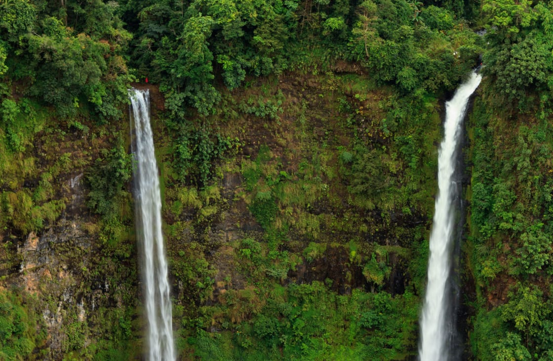 thin waterfalls in the rainforest