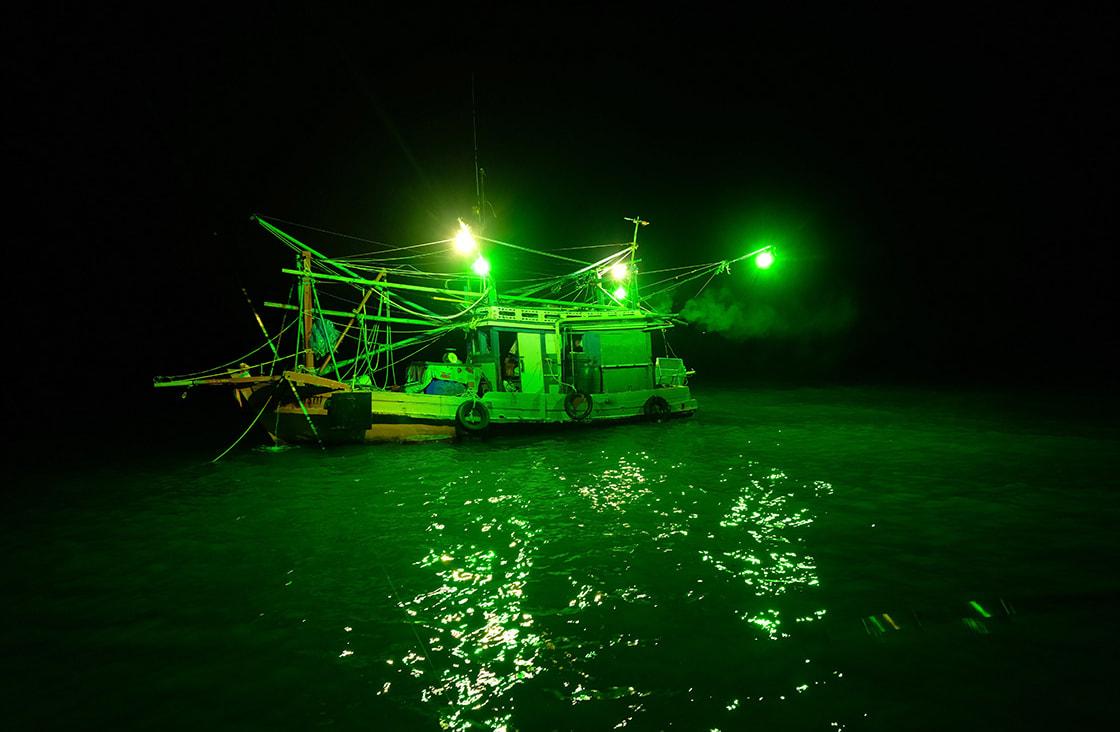 -Squid-fishing-at-night