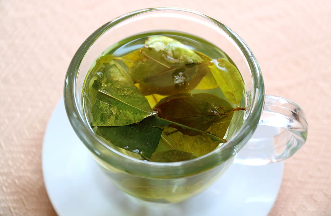 Drink,Coca,Leaf,Tea,For,Preventing,Altitude,Sickness,,Puno,,Peru