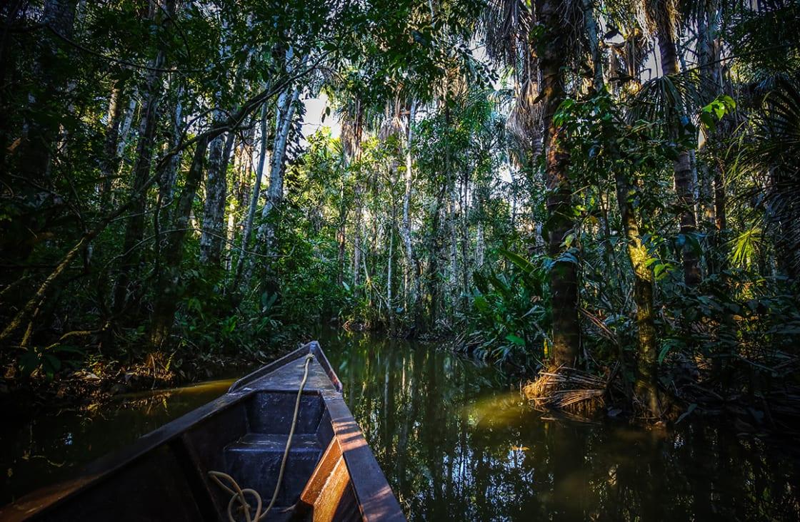 Boat,On,The,Sandoval,Lake.,Puerto,Maldonado,,Peru.