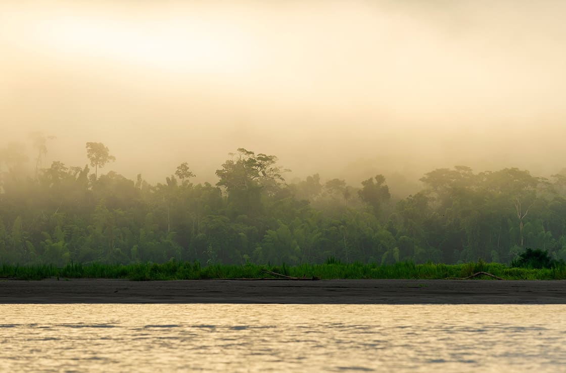 Sunrise,By,The,Amazon,River,With,The,Rainforest,In,The
