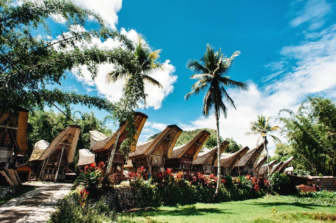 Traditional,Tana,Toraja,Village,,Tongkonan,Houses,And,Buildings.,Sunny,,Blue