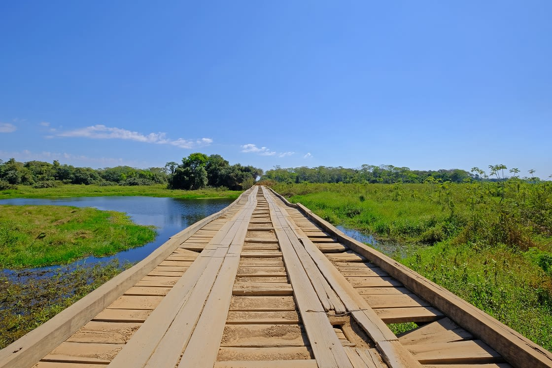 Old,Damaged,Wooden,Bridge,On,The,Transpantaneira,Dirt,Road,With