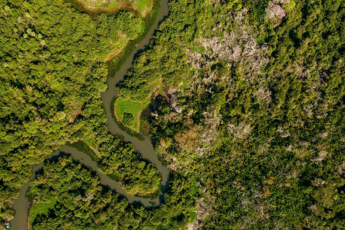 Aerial,View,Of,Pantanal,River,In,Brazil