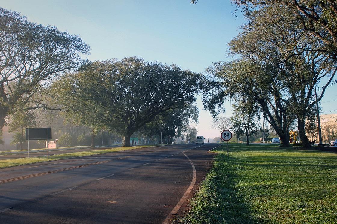 Road In Iguazu National Park Brazil
