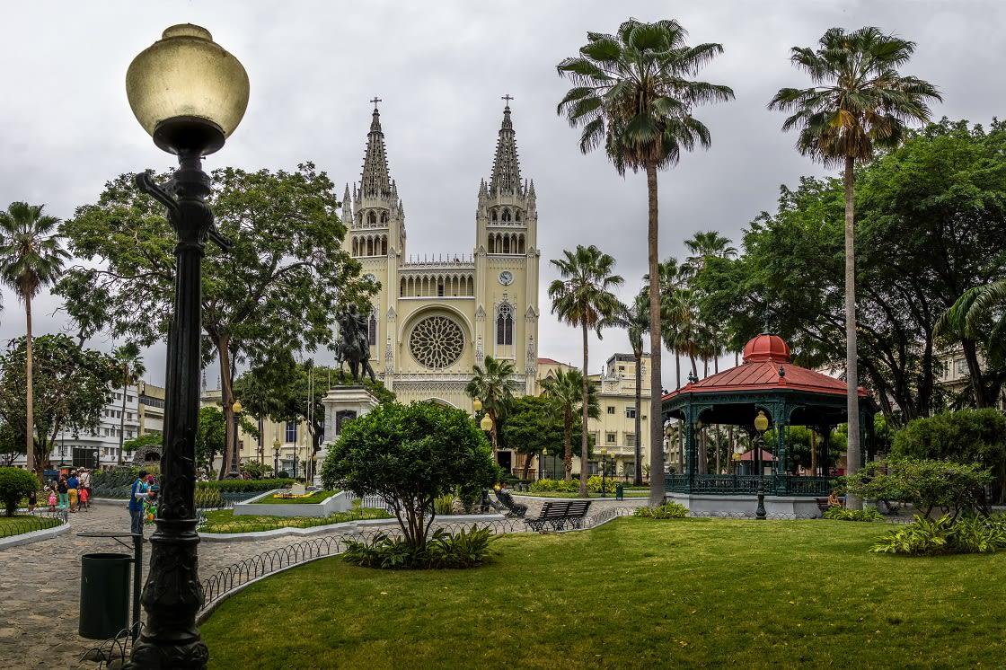 Seminario Park (iguanas Park) And Metropolitan Cathedral Guayaquil, Ecuador