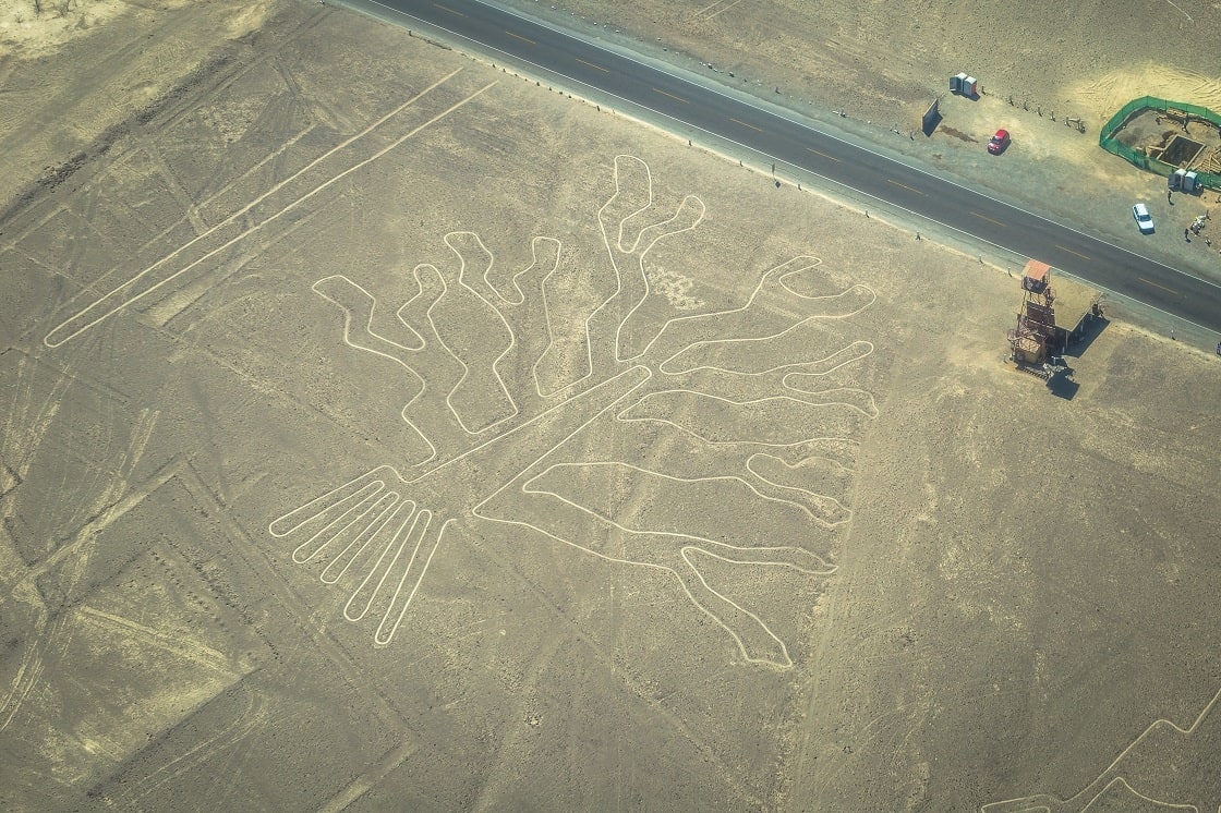 Tree Figure Of The Nazca Lines
