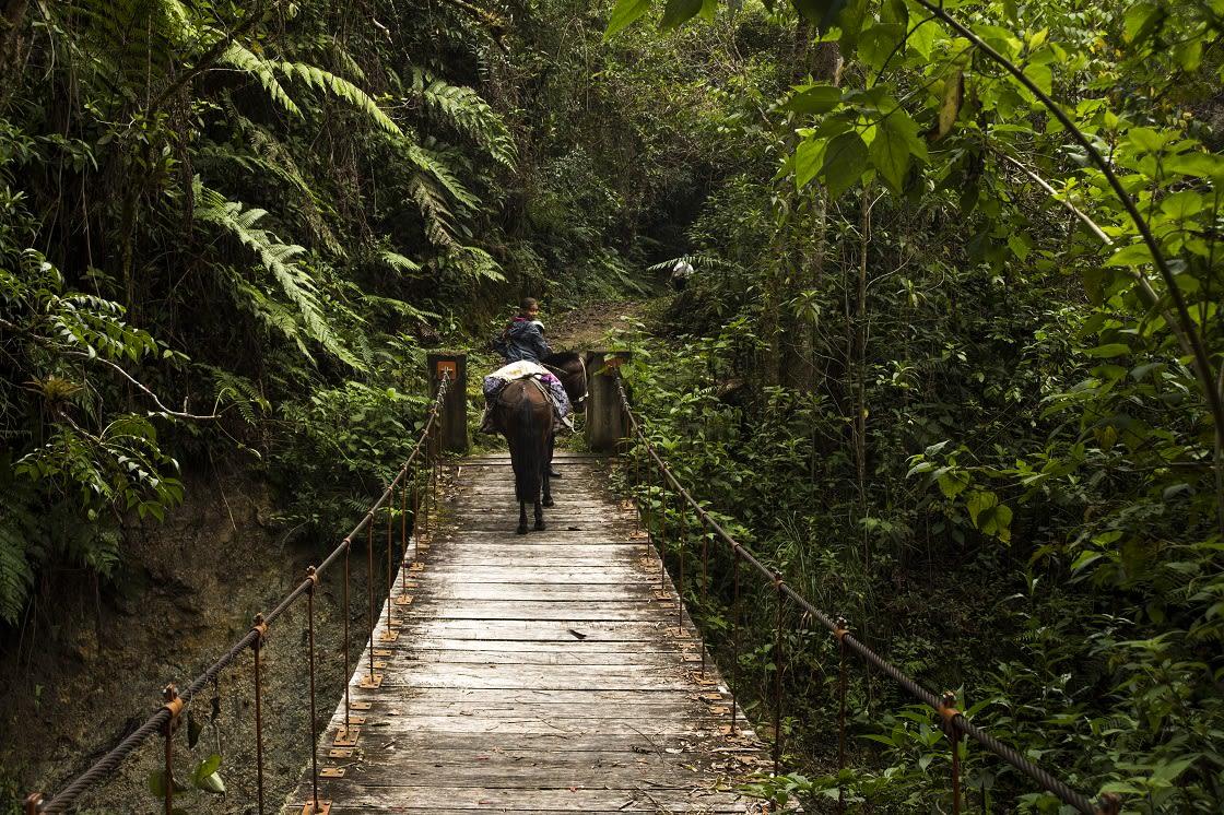 Road To Gocta Falls