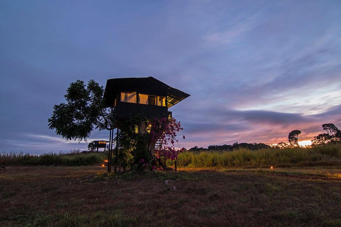 Treehouse At Dusk At Galapagos Magic Lodge