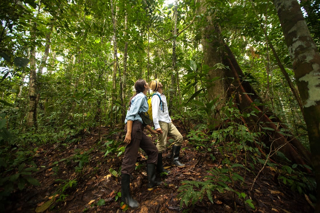 couple during a jungle walk