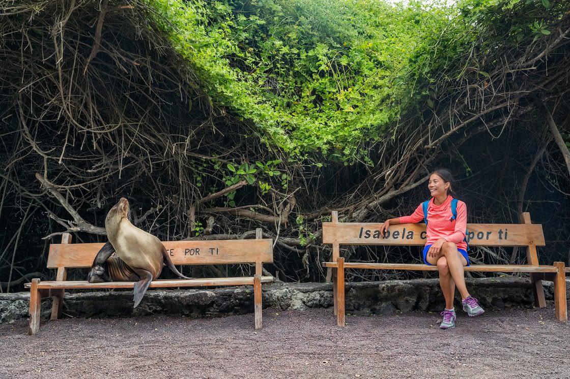 Tourist Sitting With Sealion