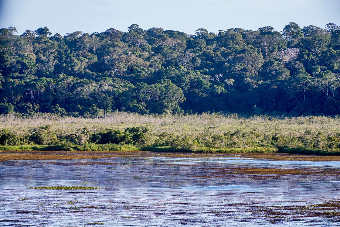Macuco Lagoon and Forest