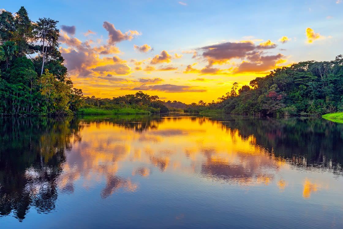 Magic Sunset In The Yasuni National Park, Ecuador