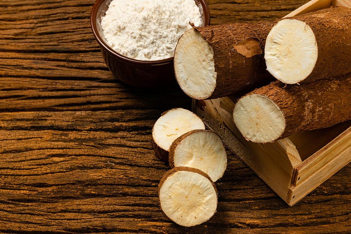 Cassava, Yuca, Manioc, Mandioca, Tapioca