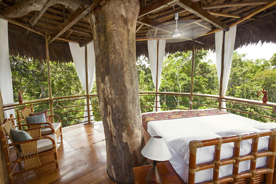 Bungalow At The Treehouse Ldoge, Iquitos - Peru