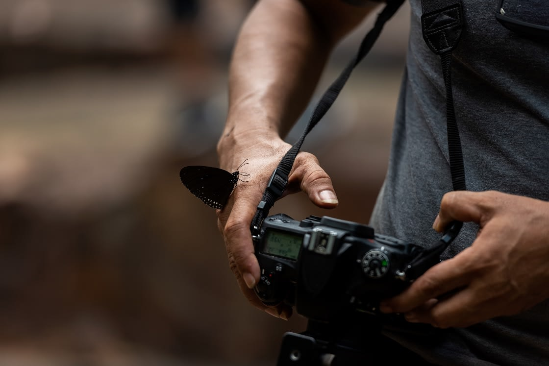 Hand And Butterfly, Professional Photographer Man HOlding Camera
