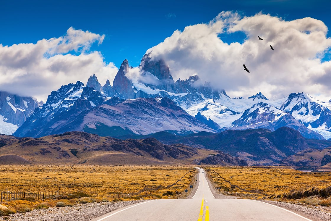 Patagonia Highway On The Way To The Fitzroy Mountain, Andean COndors FLying over