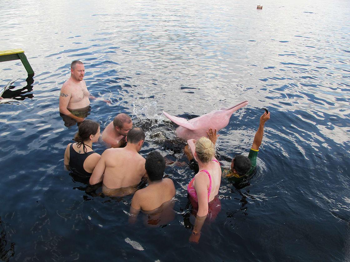 Jacare Acu Amazon-Cruise Pink Dolphin