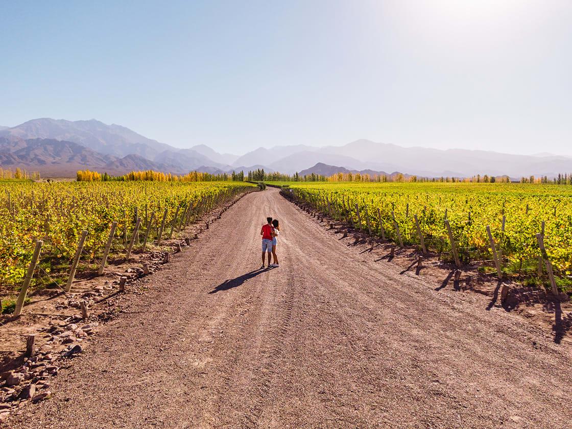 Cute Couple Walking Down The Vineyards