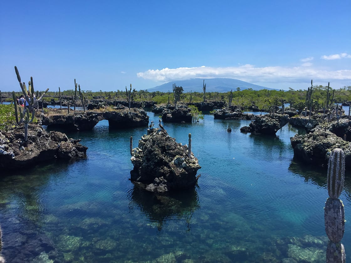 Collapsed Lava Tunnels On Isabela Island