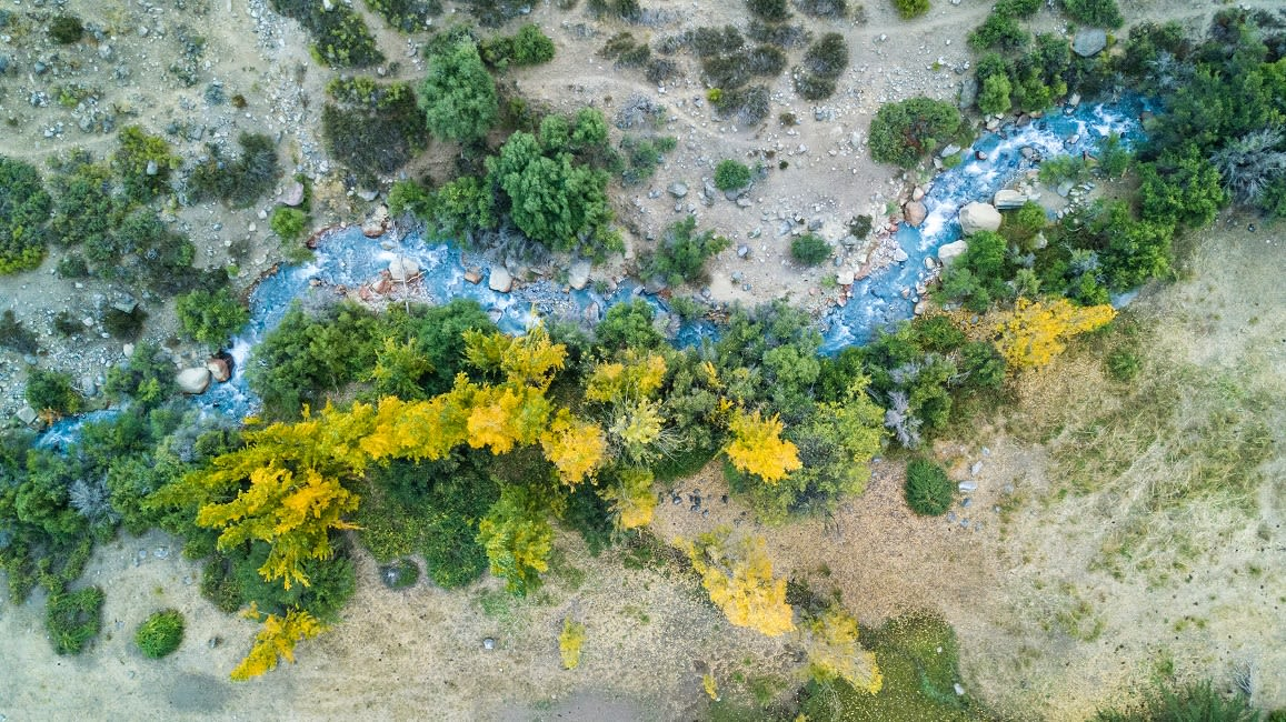 """An Aerial View At """"Yerba Loca"""" Nature Reserve"""