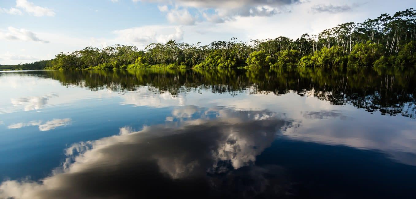 Cloud Reflects Over Pucate River In The Pacaya Samiria Reserve, Peru