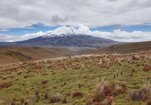 Cotopaxi Mountains in distance