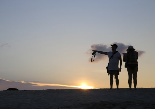 couple pointing in distance in front of sunset