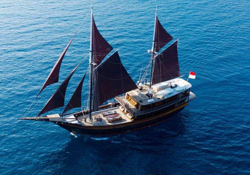 Ship sailing with sails up