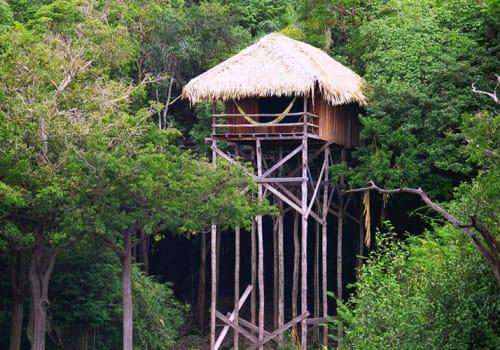 House on high stilts