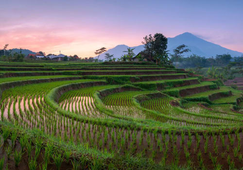 plantations in indonesia