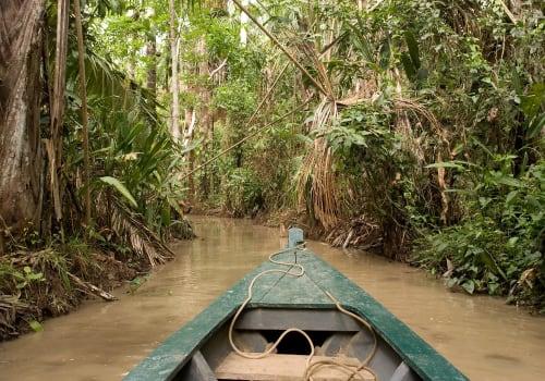 Lake Sandoval In Tambopata Natural Reserve