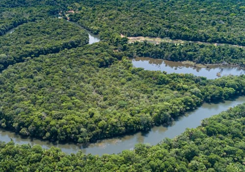 Aerial View Of A Meandering Amazon Tributary River, Amazonian Rainforest