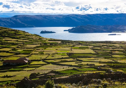 Cultivation,Spaces,And,Farms,In,Lake,Titicaca,In,Peru