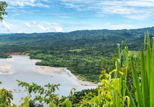 View Of The Amazonia , Manu, Peru