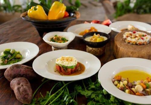 Galápagos-Food-9-Dishes-Safari-Camp-Food-Main