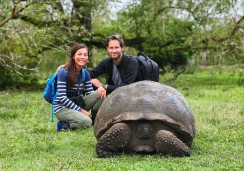 Galapagos Giant Tortoise And Tourist Couple