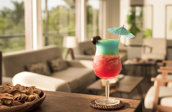 Red and green cocktail on the bar